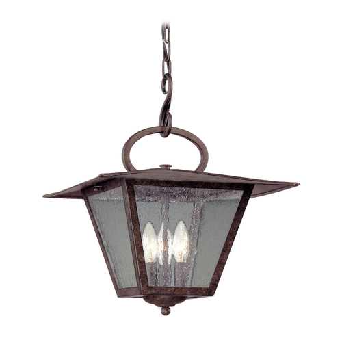 Troy Lighting Outdoor Hanging Light with Clear Glass in Fired Iron Finish F2956