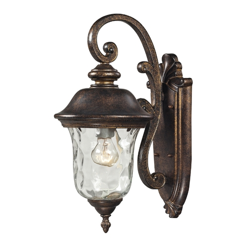 Elk Lighting Outdoor Wall Light with Clear Glass in Regal Bronze Finish 45020/1