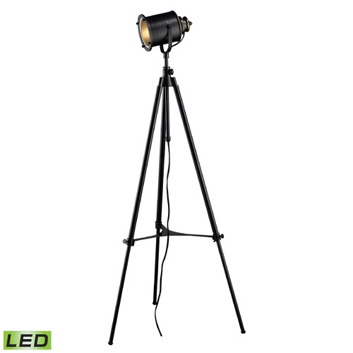 Dimond Lighting Dimond Lighting Restoration Black LED Floor Lamp with Cylindrical Shade D1735-LED
