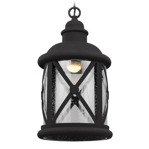 Sea Gull Lighting Sea Gull Lighting Lakeview Black LED Outdoor Hanging Light 6221492S-12
