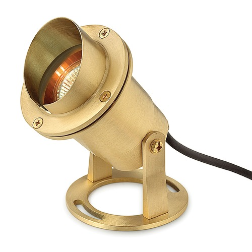 Hinkley Lighting Modern Flood / Spot Light in Brass Finish 1539BS