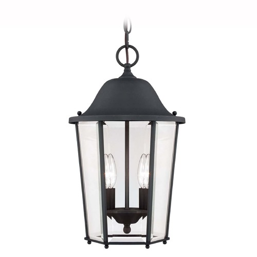Savoy House Savoy House Black Outdoor Hanging Light 5-6210-BK