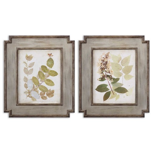 Uttermost Lighting Uttermost Natures Collage Floral Art Set of 2 51069