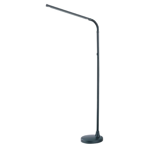 Lite Source Lighting Floor Lamp in Black Finish LSP-870BLK