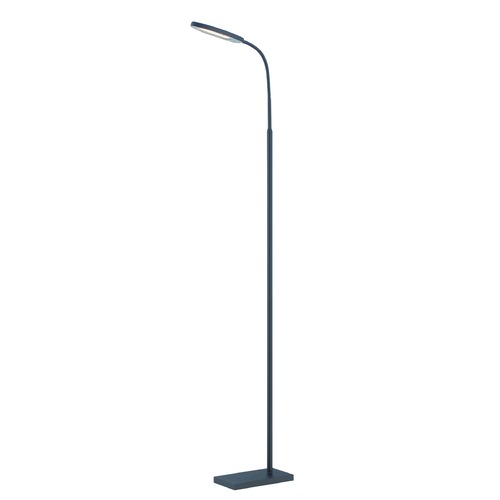Lite Source Lighting Lite Source Kairi Black LED Floor Lamp LS-82488BLK
