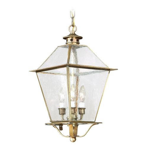 Troy Lighting Outdoor Hanging Light with Clear Glass in Charred Iron Finish FCD8956CI