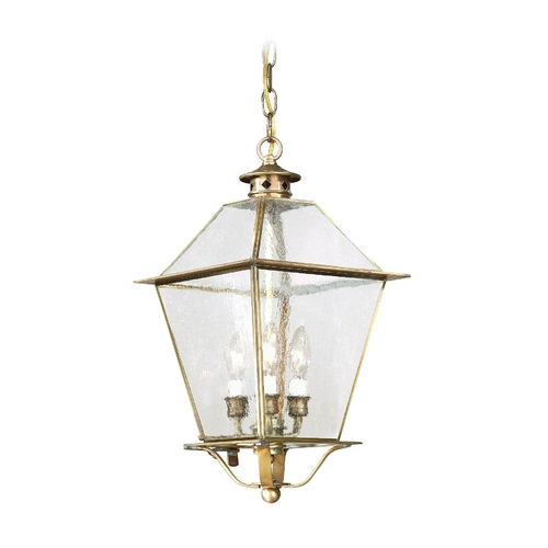 Troy Lighting Outdoor Hanging Light with Clear Glass in Natural Rust Finish FCD8956NR