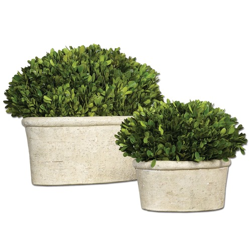 Uttermost Lighting Uttermost Oval Domes Preserved Boxwood Set of 2 60107