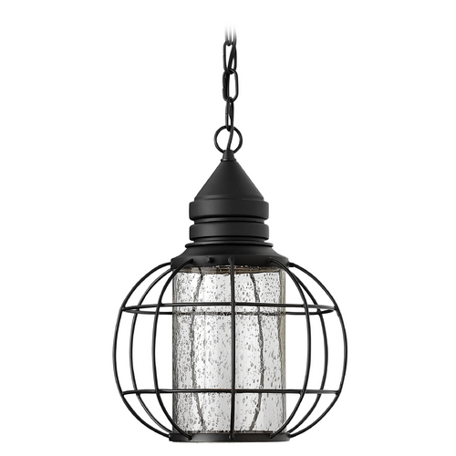 Hinkley Lighting Outdoor Hanging Light with Clear Glass in Black Finish 2252BK