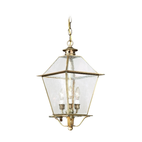 Troy Lighting Outdoor Hanging Light with Clear Glass in Natural Aged Brass Finish F8956NAB