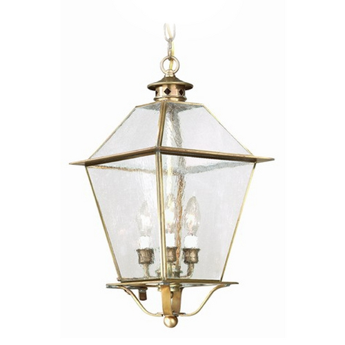 Troy Lighting Outdoor Hanging Light with Clear Glass in Natural Aged Brass Finish F8959NAB