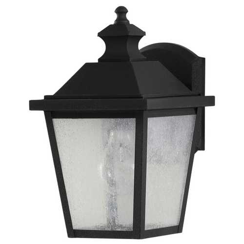 Home Solutions by Feiss Lighting Outdoor Wall Light with Clear Glass in Black Finish OL5700BK