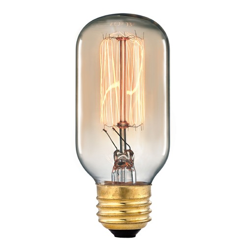 Elk Lighting Elk Lighting Vintage Filament Incandescent Bulb 1102