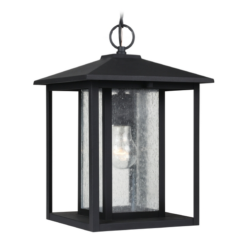 Sea Gull Lighting Outdoor Hanging Light with Clear Glass in Black Finish 62027-12