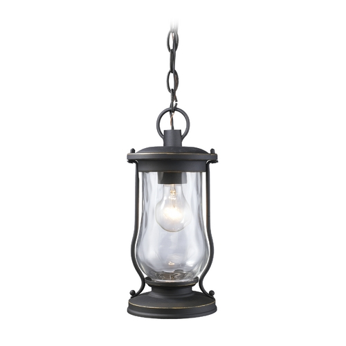 Elk Lighting Outdoor Hanging Light with Clear Glass in Matte Black Finish 43017/1