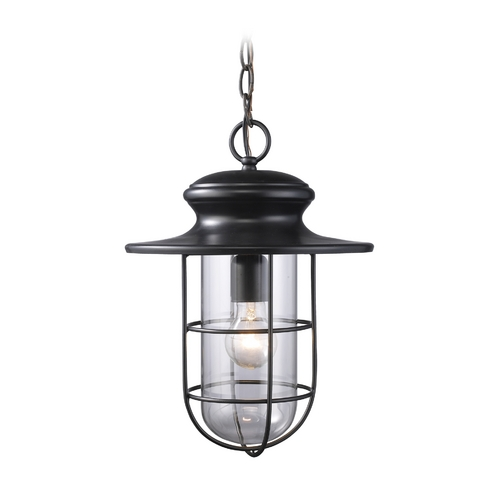 Elk Lighting Outdoor Hanging Light with Clear Glass in Matte Black Finish 42286/1