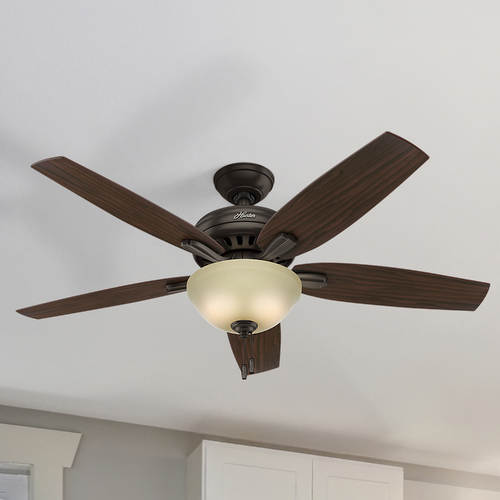 Hunter Fan Company Hunter Fan Company Newsome Premier Bronze Ceiling Fan with Light 53311
