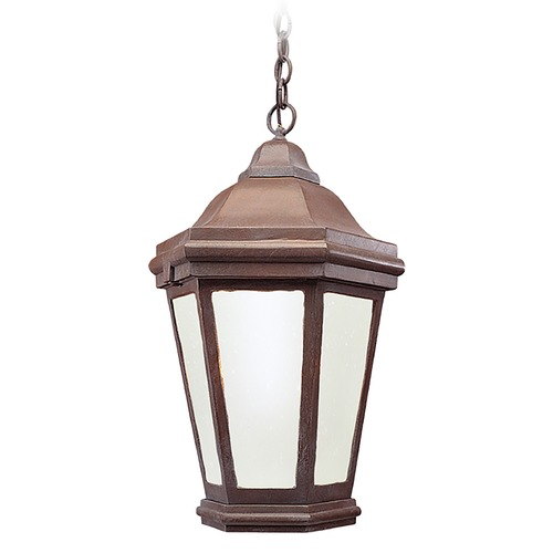 Troy Lighting Outdoor Hanging Light with Clear Glass FFCD6895BZP