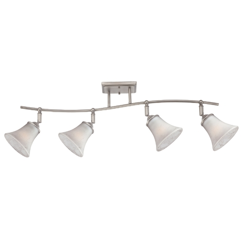 Quoizel Lighting Directional Spot Light with White Glass in Antique Nickel Finish DH1404AN