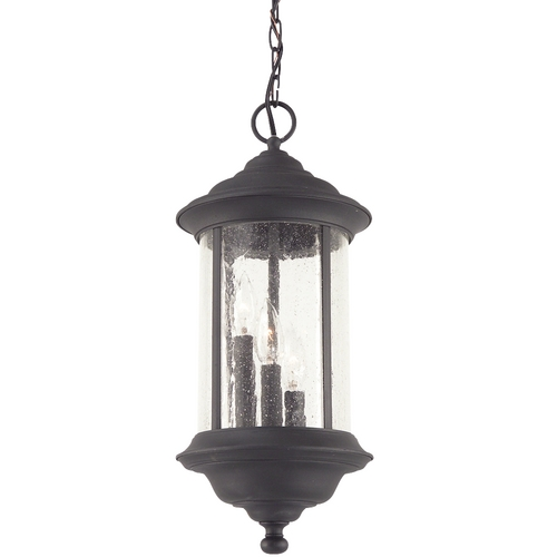 Dolan Designs Lighting Seeded Glass Outdoor Hanging Light Black 19-1/2-inch Dolan Designs 919-50