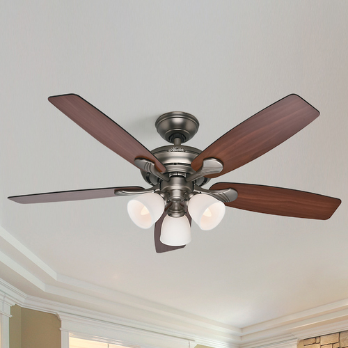 Hunter Fan Company Hunter Fan Company Conway Antique Pewter Ceiling Fan with Light 53052