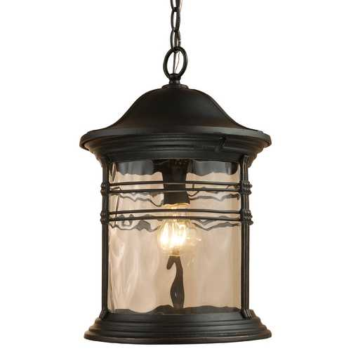 Elk Lighting Outdoor Hanging Light with Clear Glass in Matte Black Finish 08160-MBG