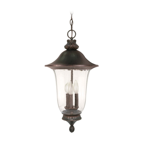 Nuvo Lighting Outdoor Hanging Light with Clear Glass in Old Penny Bronze Finish 60/981