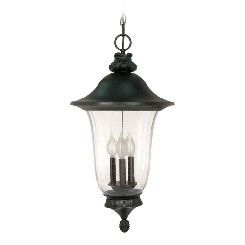 Nuvo Lighting Outdoor Hanging Light with Clear Glass in Textured Black Finish 60/982