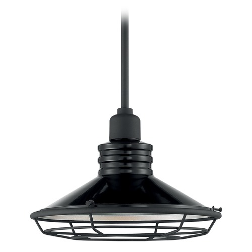 Satco Lighting Satco Lighting Blue Harbor Gloss Black / Silver Outdoor Hanging Light 60/7034