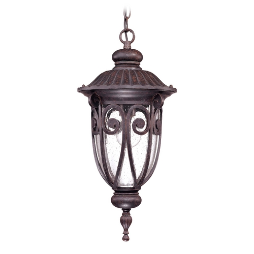 Nuvo Lighting Outdoor Hanging Light with Clear Glass in Burlwood Finish 60/2068