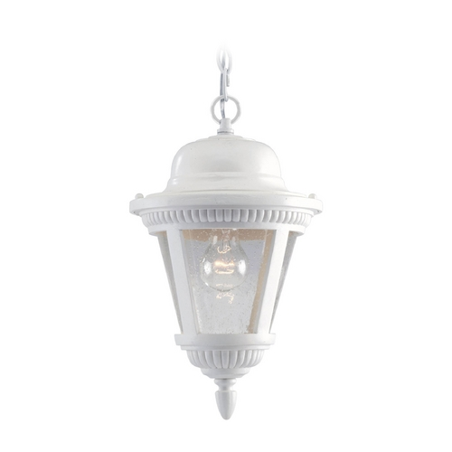 Progress Lighting Progress Outdoor Hanging Light with Clear Glass in White Finish P5530-30