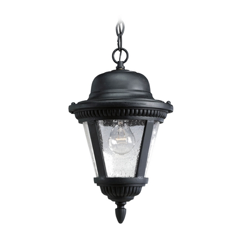 Progress Lighting Seeded Glass Outdoor Hanging Light Black Progress Lighting P5530-31