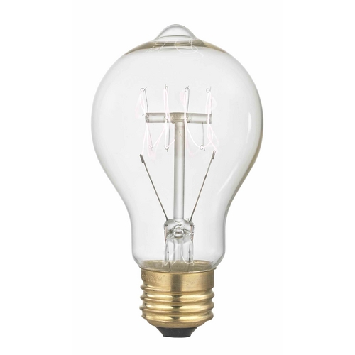 Design Classics Lighting Nostalgic Vintage Edison Carbon Filament Light Bulb - 40-Watts 2400K 40A19 FILAMENT