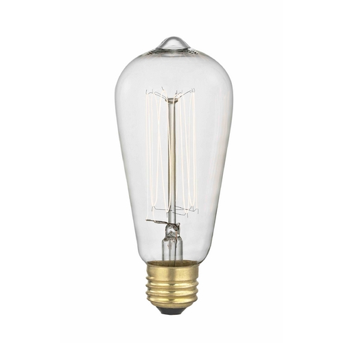 Design Classics Lighting Vintage Edison Squirrel Cage Light Bulb - 60-Watts 60ST58 FILAMENT