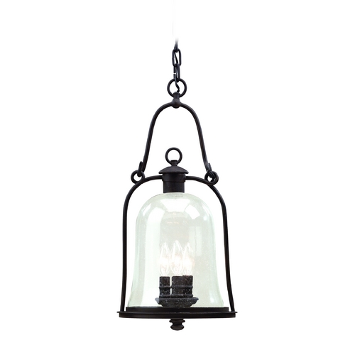 Troy Lighting Outdoor Hanging Light with Clear Glass in Natural Bronze Finish F9467NB