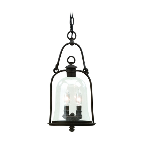 Troy Lighting Outdoor Hanging Light with Clear Glass in Natural Bronze Finish F9466NB