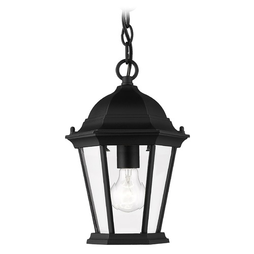 Livex Lighting Livex Lighting Hamilton Black Outdoor Hanging Light 7559-04