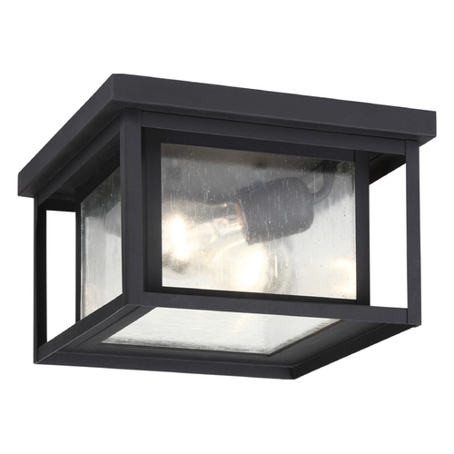 Sea Gull Lighting Close To Ceiling Light with Clear Glass in Black Finish 78027-12