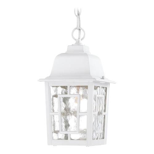 Nuvo Lighting Outdoor Hanging Light with Clear Glass in White Finish 60/4931