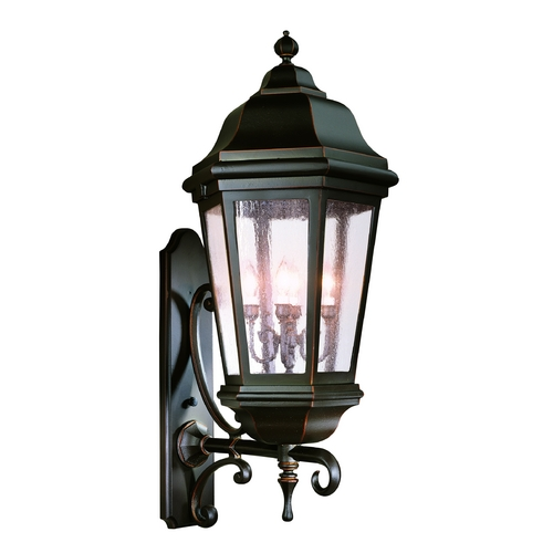 Troy Lighting Outdoor Wall Light with Clear Glass in Bronze Patina Finish BCD6836BZP
