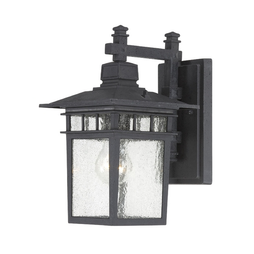 Nuvo Lighting Outdoor Wall Light with Clear Glass in Textured Black Finish 60/4953