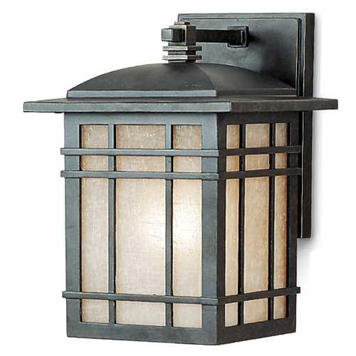 Quoizel Lighting 10-Inch Outdoor Wall Light HC8407IB