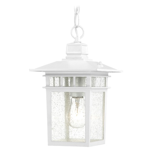 Nuvo Lighting Outdoor Hanging Light with Clear Glass in White Finish 60/4954