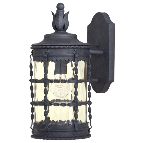 Minka Lavery Outdoor Wall Light with Clear Glass in Spanish Iron Finish 8880-A39