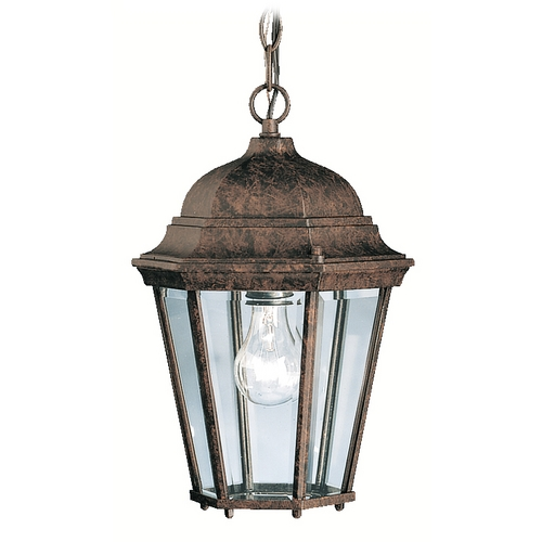 Kichler Lighting Kichler Outdoor Hanging Light in Tannery Bronze Finish 9805TZ