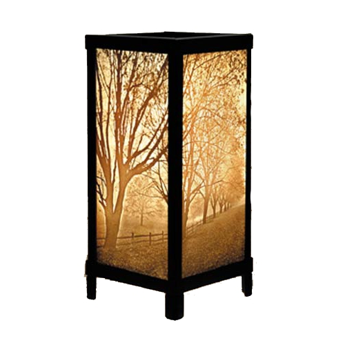 Porcelain Garden Lighting Misty Meadow Porcelain Lithophane Accent Table Lamp LT08