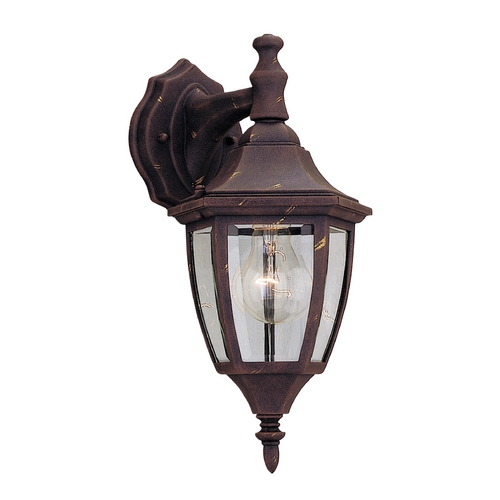Designers Fountain Lighting Outdoor Wall Light with Clear Glass in Autumn Gold Finish 2461-AG