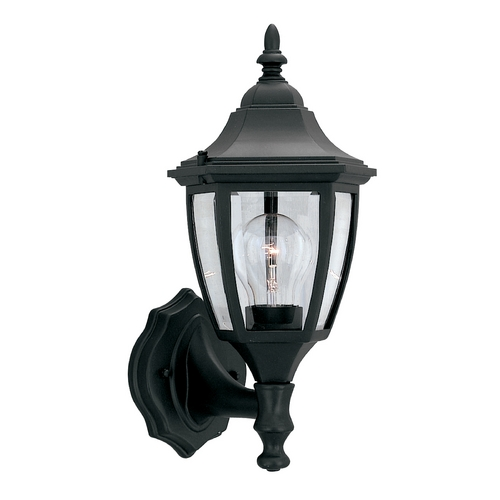 Designers Fountain Lighting Outdoor Wall Light with Clear Glass in Black Finish 2462-BK