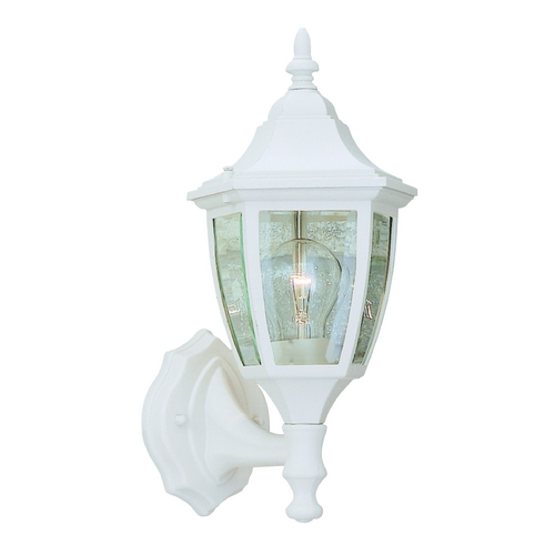 Designers Fountain Lighting Outdoor Wall Light with Clear Glass in White Finish 2462-WH