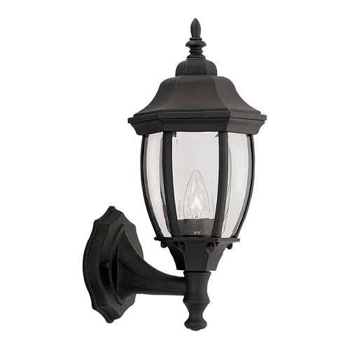 Designers Fountain Lighting Outdoor Wall Light with Clear Glass in Black Finish 2420-BK